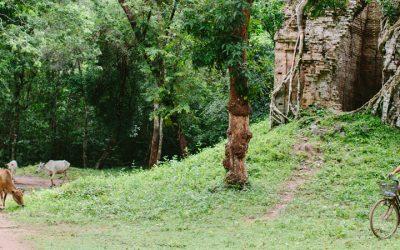 My visit to Isamborei Homestay at Sambor Prei Kuk temples