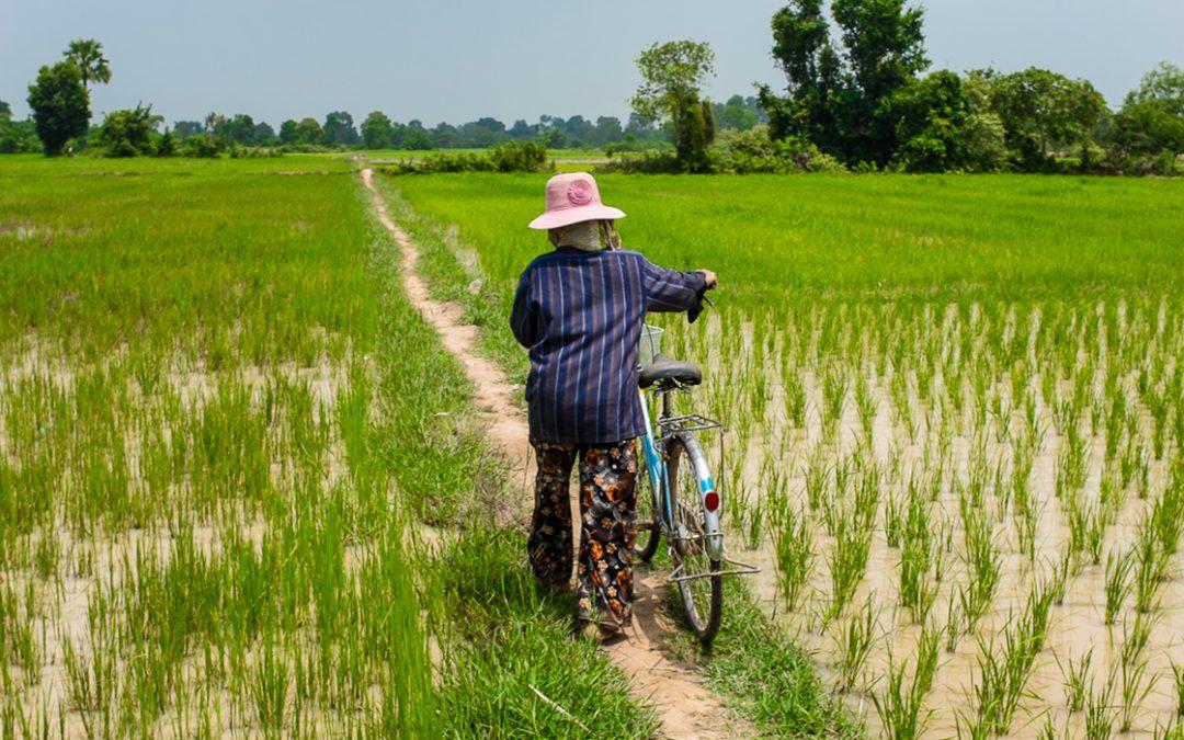 OBT Chiro Village Kampong Cham