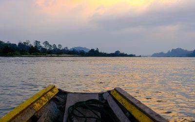 Irrawaddy dolphin Preah Rumkel